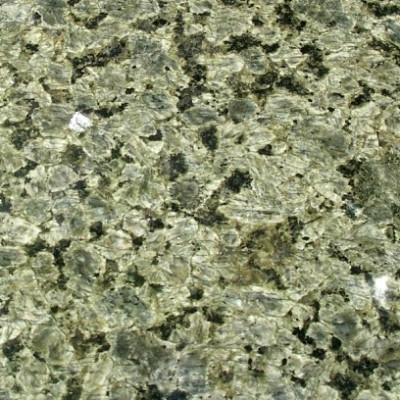 cindy green (2)