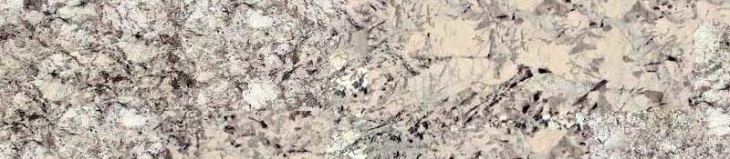 Delicatus White (7)