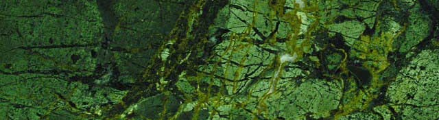 green peace (1)